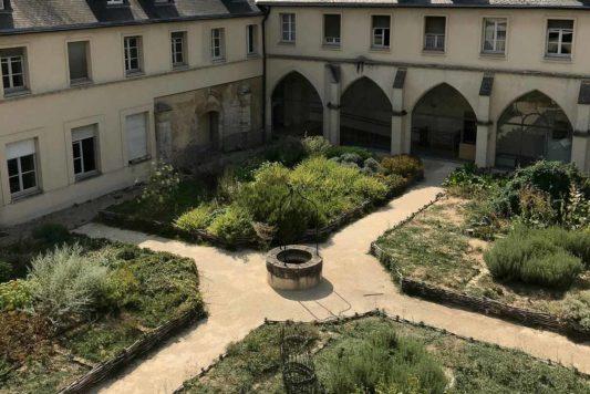 Voyage dans l'univers de plantes médicinales au cœur du jardin du Cloître de Chelles