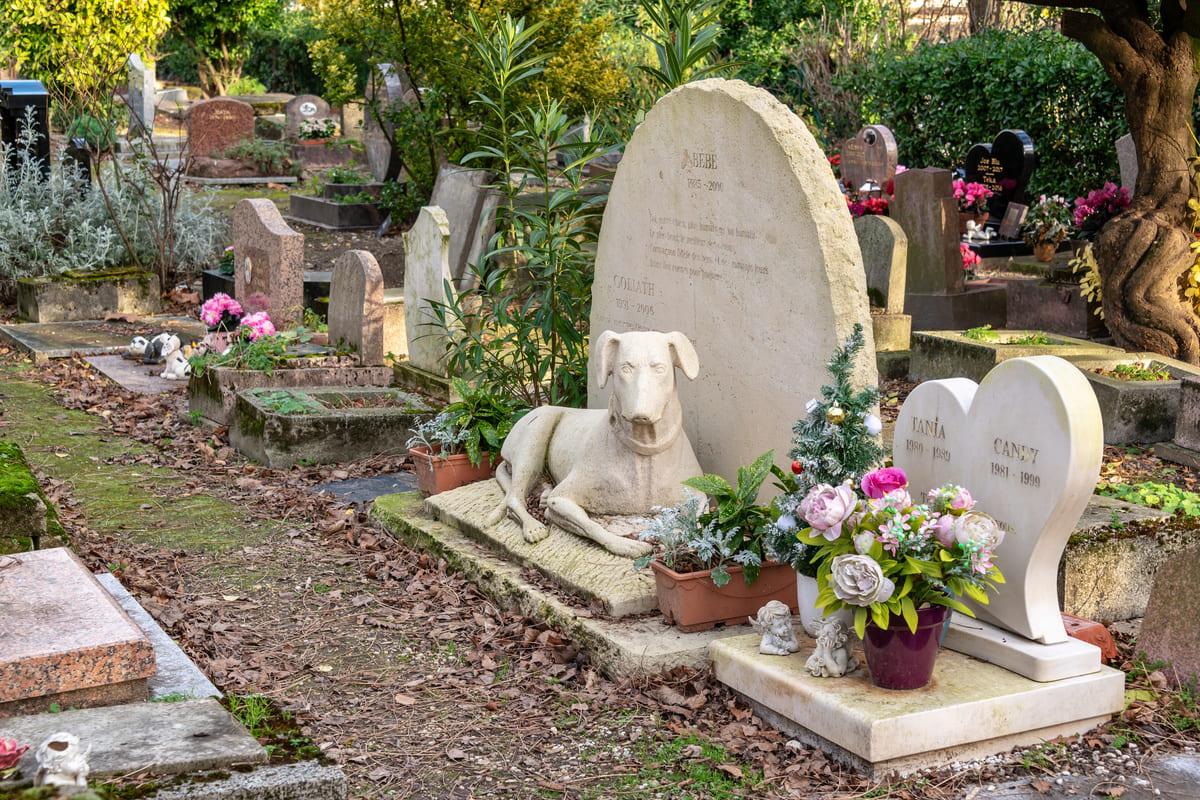 découverte insolite en Ile-de-France cimetière Asnières
